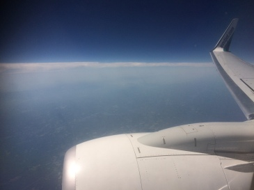 on the plane home