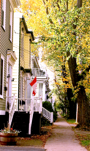 Duncan Street.png